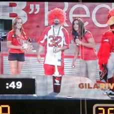 Arizona Cardinals In-Stadium Host